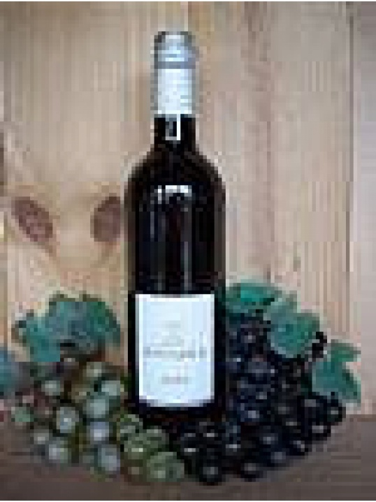 Merlot Domaine De La Provenquiere (Languedoc) (South of France) 2016/17